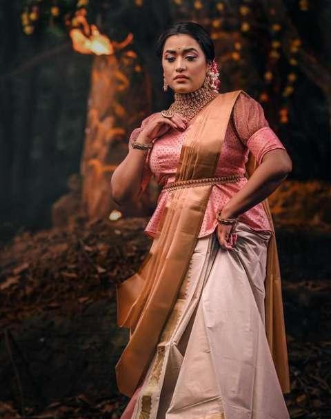 Parvathy R Krishna image